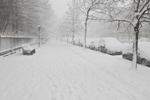 Actividades para la familia durante el invierno en Boston