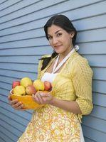 Frutos secos y secas snacks de fruta para una dieta sin almidón