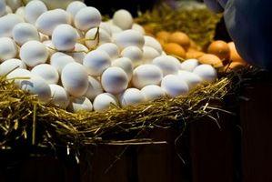 ¿Cuál es la diferencia entre Peafowl huevos de pato y tamaño de los huevos?