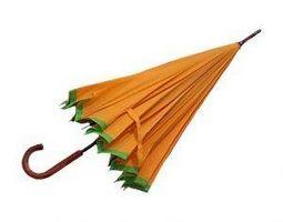 Acerca de los paraguas