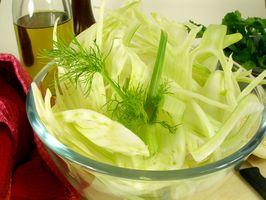 Preparación & Comiendo Hinojo