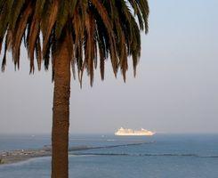 Cómo viajar a Hawaii por barco de cruceros