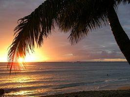 Cosas gratis que hacer en Kona, Hawaii