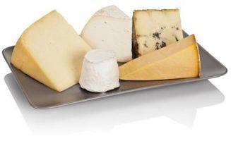 Tipos de quesos blancos
