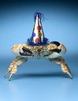 Las comidas que van con las piernas de cangrejo de nieve