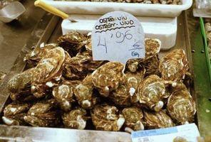 El mejor método para almacenar ostras frescas