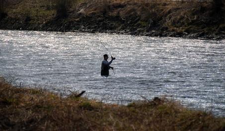 Guía de la pesca de Alaska para la trucha
