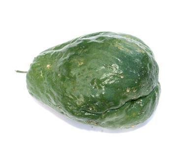 ¿Qué verduras crecen en la selva tropical?