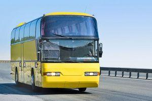 Dónde encontrar Autobus barato