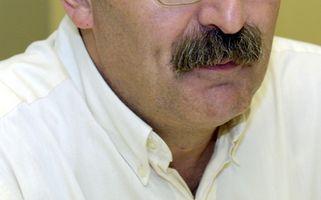 Diferentes estilos de bigotes