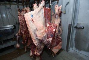 Cómo preparar una vaca para la Masacre