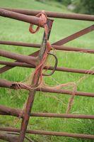 Pennsylvania explotaciones agrícolas que producen USDA Prime Beef