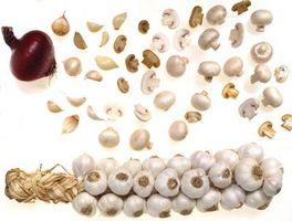 Cómo curar la cosecha de ajo con ajo fresco del trenzado