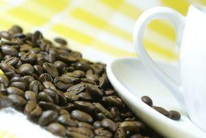 Cómo utilizar un molinillo de café Bodum