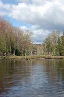 Adirondack Propiedades de caza