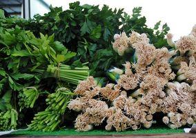 Cómo Picar cilantro fresco