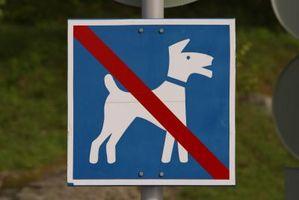 La Ley de Perros de Ayuda para personas discapacitadas