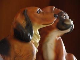 Efectos secundarios de la biotina para perros