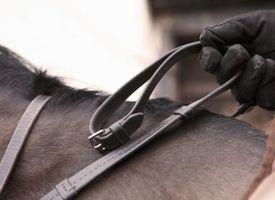 Cómo conectar a un equipo de diamantes de imitación de caballos