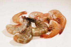 Cuáles son los tamaños más grandes de camarón?