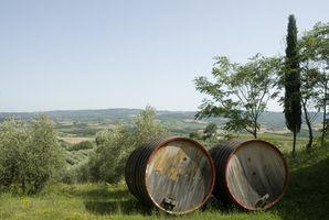 Vacaciones en Toscana, Italia