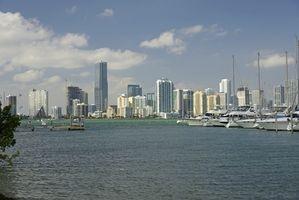 Hoteles cerca de centro de Miami, Florida
