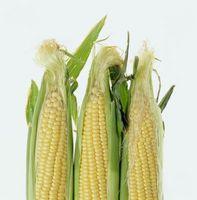 Cómo hacer a la parrilla de maíz en la mazorca para una barbacoa