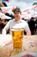 Cerveza y queso Festivales