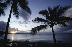 Guía de viajes a Sea Sports & Diving en St. Croix, Islas Vírgenes de los EE.UU.
