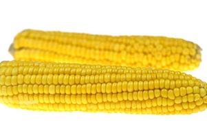 Cómo cocinar el maíz en la mazorca fresco en la estufa