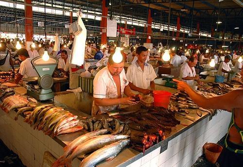 Qué hacer en Manaus, Brasil