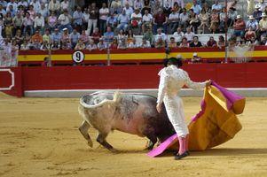 Tours baratos de España