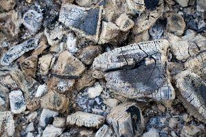 Solución de problemas de carbón Brinkmann Fumador