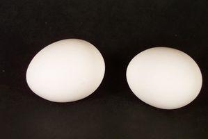Cómo hacer Fácil de huevos cocidos duro Peel