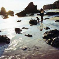 Cerca de las playas de Bakersfield, California