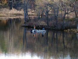 Lago Campamentos en Michigan