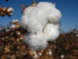 Qué hacer que el agua caliente del algodón del encogimiento?