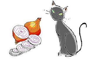 Cómo utilizar una cebolla para desodorizar una caja de arena del gato