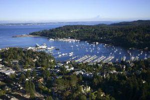Ideas para el fin de semana del Día del Trabajo en el área de Seattle