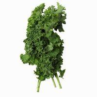 Cómo agregar Kale Soup