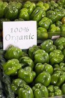 Tiendas de alimentos naturales en Tampa, Florida