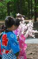 Peinados tradicionales de los niños japoneses