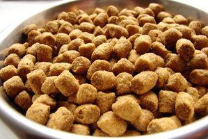 Comida para gatos y diarrea