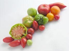 Cómo Deshidratar Tomates El uso de un deshidratador