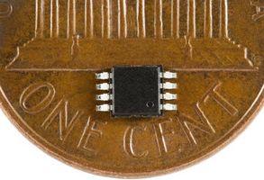 Micro Chip con los perros