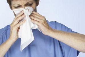 Peligros alergia a los gatos