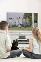 Los gatos pueden ver la televisión?