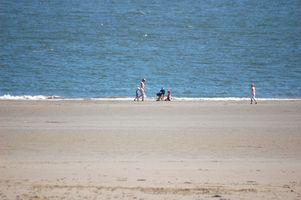 Cerca de las playas del océano Pennsylvania