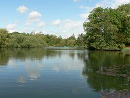 Complejos en Atwood lago en Ohio