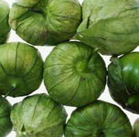 ¿Puedo utilizar la salsa verde para hacer Enchiladas Suiza?